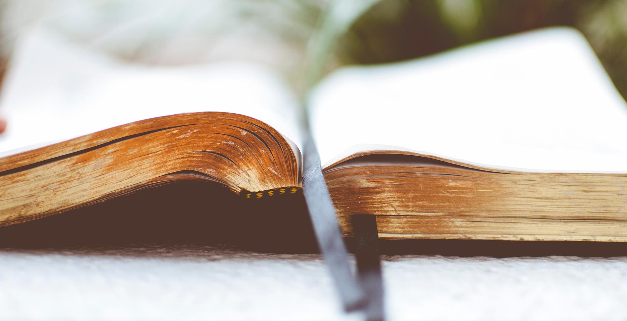 biblia-gral